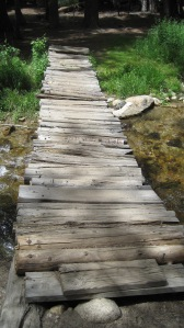 6-14-14 Hike to waterfall (16)