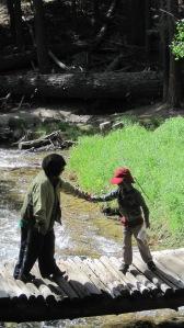 6-14-14 Hike to waterfall (6)