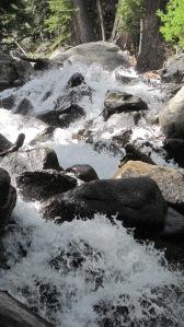 6-14-14 Hike to waterfall (9)