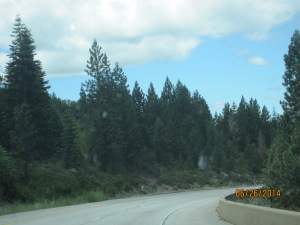 The drive from Carson City, NV to Auburn, CA was nerve-wracking for me. Lots of uphill and downhill.
