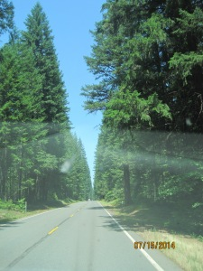 7-15-14 Oregon 005