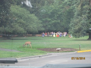 That would be a deer grazing while the hula-dancing class swayed away.