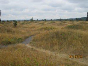 8-14 Mima Mounds (7)
