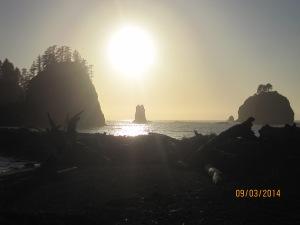 9-3 La Push Beach (4)