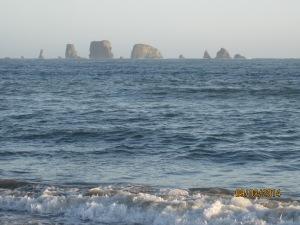 9-3 La Push Beach (7)