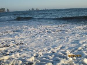 9-3 La Push Beach (9)